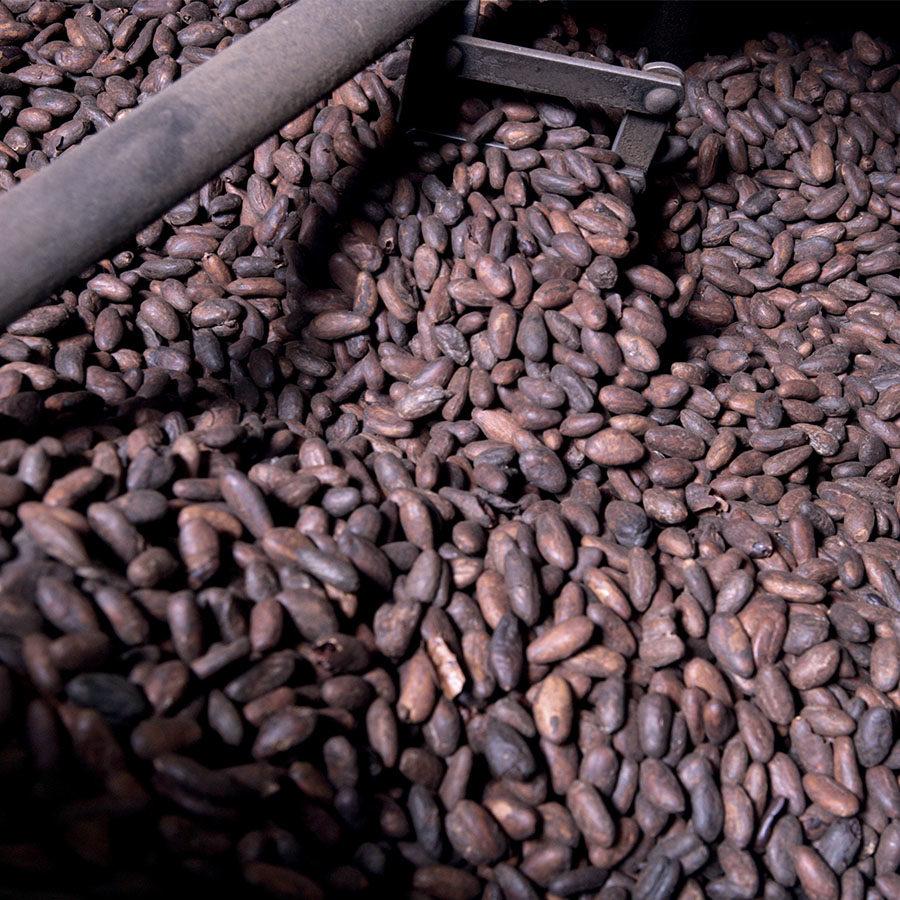 Torréfaction des fèves de cacao